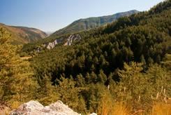 Ausblick Richtung Osten in der Nähe der Passhöhe des Col de Toutes Aures