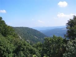Ausblick über die Vogesen vom Col de la Schlucht