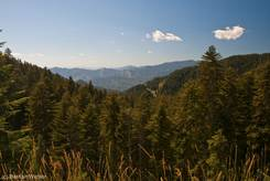 Ausblick vom Col de Turini