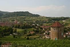 Ausblick von den Weinbergen über Arbois