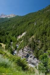 Ausblick von der Straße zwischen Molines-en-Queyras und Ville Vieille auf die am anderen Ufer der Aigue Agnelle aus einem Lärchenwald emporragende Demoiselle Coiffée