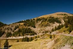 Blick von der Passhöhe des Col de la Couillole auf die Straße aus Richtung Westen
