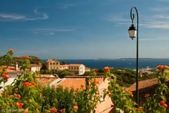 Blumen und Ausblick auf das Mittelmeer, im linken Bereich davor das Rathaus von Bormes-les-Mimosas