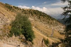Col d'Allos: Die Straße von Barcelonnette führt über viele Kehren hinauf zur Passhöhe