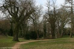Der Eschenburgpark im Frühling (26.03.2010)