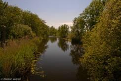 Der kleine Fluss Aalbeek in der Nähe des Vogelparks Niendorf