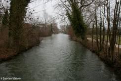 Die Hegauer Aach am Stadtpark von Singen
