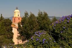 Die Kirche von St.-Tropez mit dunkel violetten Blüten im Vordergrund