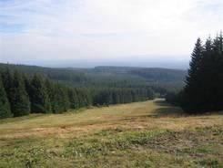 Die Rodelbahn am Wurmberg