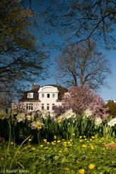 Frühling im Hessepark in Lübeck