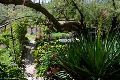 Garten am Ortsrand von Lourmarin