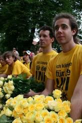 Gelbe Rosen werden bereit gehalten