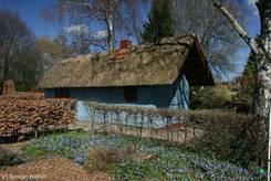 Kleines blaues Haus mit Reetdach im hinteren Teil des Lübecker Schulgartens