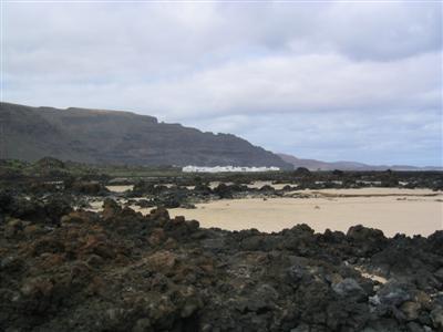 Landendes Flugzeug auf dem Flughafen auf Lanzarote Der Atlantik war zunächst etwas unruhig Strand im Zentrum von Puerto del Carmen Im Hotelgarten wuchsen Bananen Yaiza - ein Dorf in Inselinneren El Golfo - ein Vulkankrater, dessen eine Kraterseite bereits durch das Meer abgetragen wurde Im Inneren des Kraters befindet sich eine Lagune mit grünem Wasser Ein Teil der Kraterwand widersetzt sich noch dem Meer Die Nordspitze der Insel, hier findet man auch kleine Strände mit hellem Sand, die allerdings vom einem riesigen Lavafeld umegeben sind Hier ist das Meer aufgrund der vorgelagerten Lavafelsen auch recht ruhig und klar Die Lavafelsen sind mit verschiedenen Sukkulenten bewachsen, also Pflanzen, die in ihrem Gewebe viel Wasser speichern können und somit auch lägere Trockenzeiten überstehen Das Tal der Tausend Palmen, hier sollen allerdings weit mehr Palmen stehen als der Name schließen lässt Ein kleiner Hafen in Arrecife, der Inselhauptstadt Kirche in Arrecife Blick von den Bergen Richtung Atlantik Femes - ein Dorf am Ende eines Hochtals Der Blick durch das Hochtal Puerto Calero - eigentlich der Yachthafen von Puerto del Carmen, denn die Orte gehen fast ineinander über Auf dem Rückflug - hier über der Atlantikküste Frankreichs