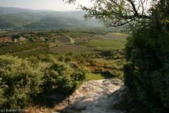 Luberon: Felder zu Füßen von Saignon