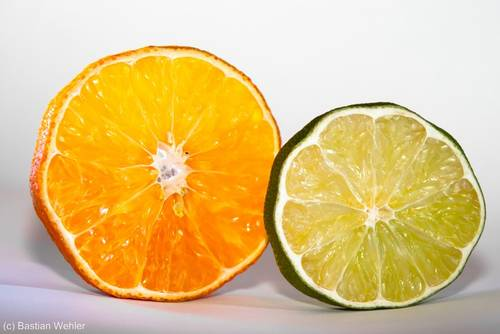 Mandarinen- und Limettenscheiben - getrocknet sind sie ein hervorragender Advents- und Weihnachtsschmuck