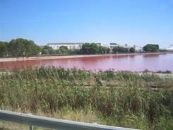 Salzgewinnung in der Nähe von Aigues-Mortes