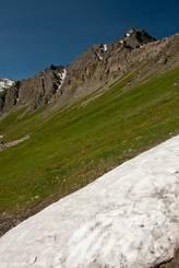 Schneereste und zart blühende Wiesen im Juli gleich neben der Passhöhe