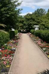 Schulgarten Lübeck: Beidseits bunt bepflanzter zentraler Weg