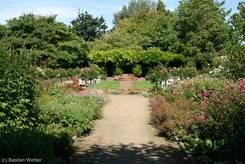 Schulgarten Lübeck: Blick über den Senkgarten