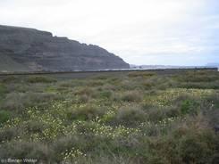 Steil aufragende Felsen an der Küste unweit von Orzola