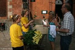 Verteilen von gelben Rosen an die Zuhörer in St. Petri